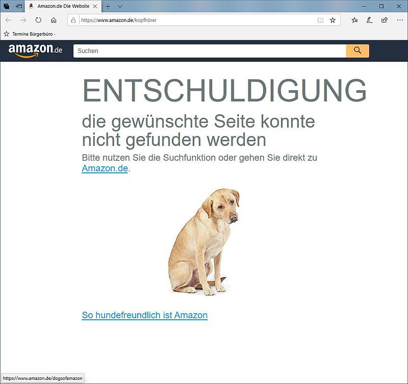 eine Fehlerseite von Amazon mit einem Hund