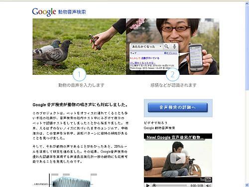 Google Dienst zum Übersetzen von Tierlauten