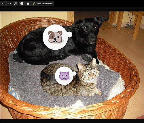 Klappt auch mit Hund und Katze. Menschengesichter bekommen ein Smiley :-)