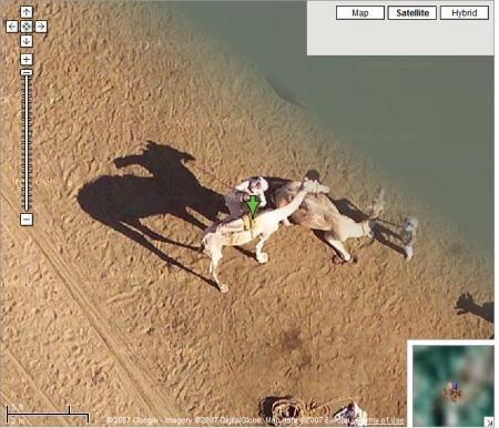 Kamele und Beduinen in der Wüste bei Zoomstufe 23