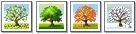 verschiedene Bäume nach Jahreszeit