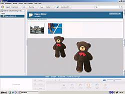 Bildschirmfoto mit Teddybär